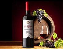原装进口西班牙红酒-特级橄榄油